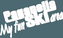 paganella_ski_logo.png